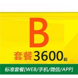 B标准套餐[WEB/手机/微信]